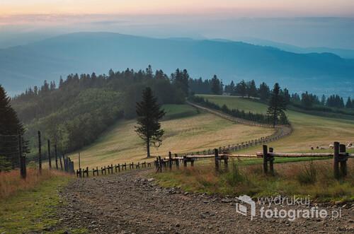 Wieczorny widok z góry Prusów w kierunku północnym na Beskid Śląski