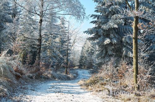 Słoneczny zimowy dzień w Beskidzie Małym.