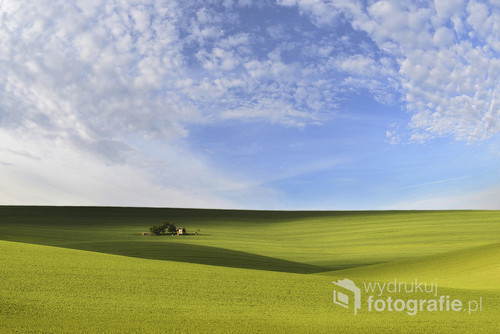 wiosna morawy południowe oraz wielkie połacie groszku , które zaopatrują wiekszą część Europy , a że dobrzy ludzie zostawili ten mały ogródek to wielki szacun dla nich  Fotografia nagrodzona Eisa 2016   mistrzowie krajobrazu