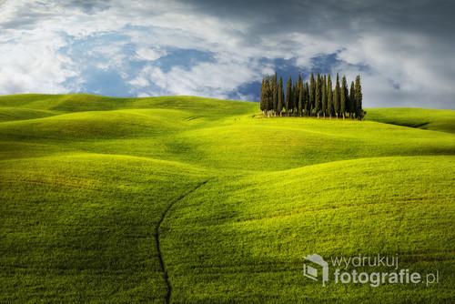 jedno z bardzo popularnych miejsc w Toskanii , zazwyczaj fotografowane z głównej drogi lecz pokusiłem sie zejść z niej w głąb pola i zrobić po mojemu :)