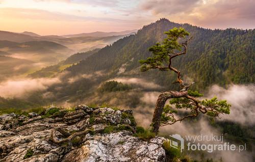 Fotografia została wykonana na jednym z najpiękniejszych szczytów w Polsce - Sokolicy.