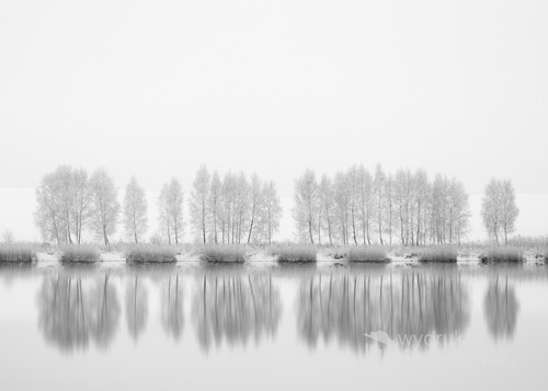 mroźny styczniowy poranek nad jeziorem...