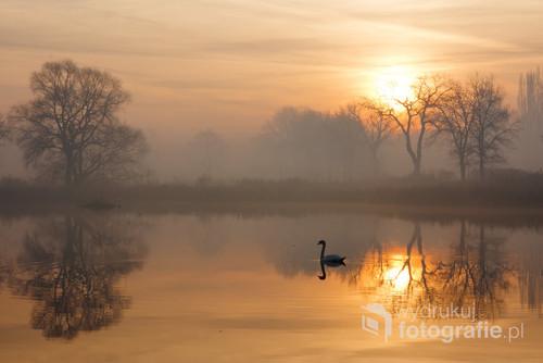 Zdjęcie zrobione w listopadowy poranek na jednym z Czechowickich stawów