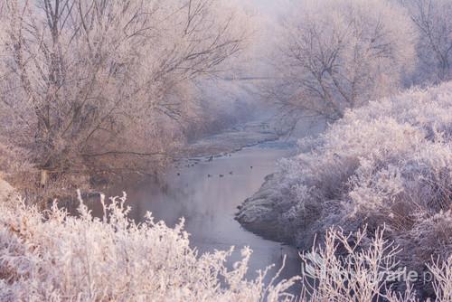 Rzeka Biała okolice Czechowic Dziedzic .
