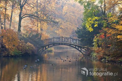 Ark w Pszczynie jesienią.