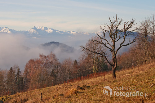 Pienińskie mgły, widok ze szlaku na Bereśnik.