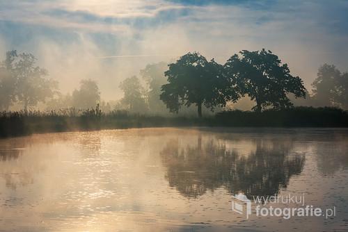 Wiosenny mglisty poranek nad stawami w Czechowicach Dziedzicach.