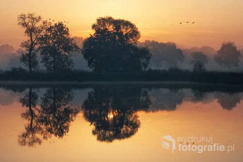 Zdjęcie zrobione o świcie nad stawami w Czechowicach Dziedzicach.