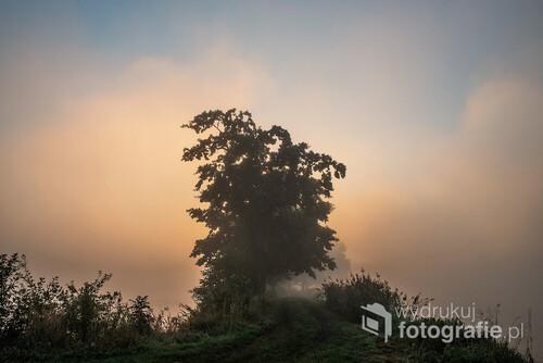 Wrześniowy mglisty poranek.