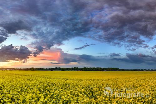 podkarpackie, ziemia lubaczowska