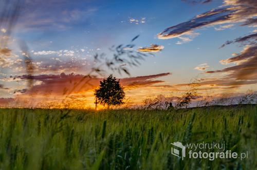 Zachód Słońca w podkarpackiej części Roztocza, Werchrata