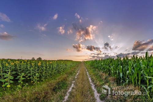 Skolin mieści się w południowo - wschodniej Polsce, przy granicy PL- UA.