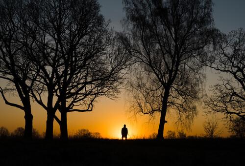 Autoportret wykonany latem o wschodzie słońca.