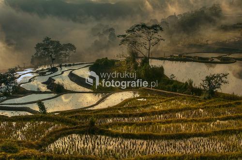 Świt na tarasach ryżowych Jin-Kou, w prowincji Yunnan, Chiny 2012.