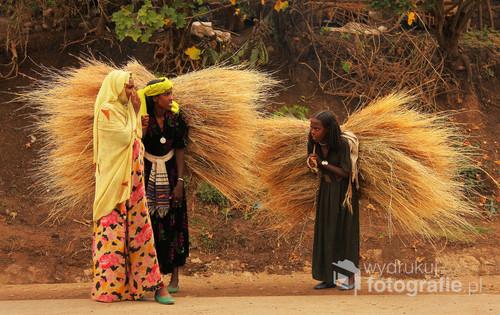 Którędy do nieba? Scena przydrożna,Etiopia północna. 2011. Zdjęcie z wystawy Etiopia - Podejrzane Obrazy