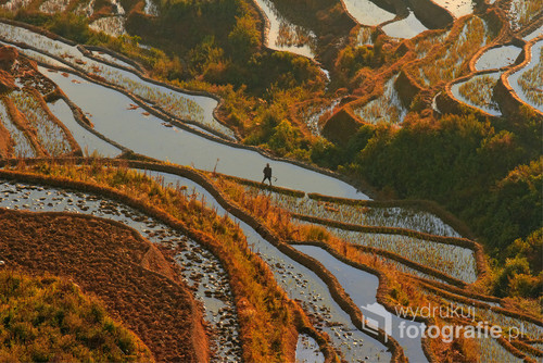 poranek na tarasach ryżowych Bada, Yunnan, Chiny 2012