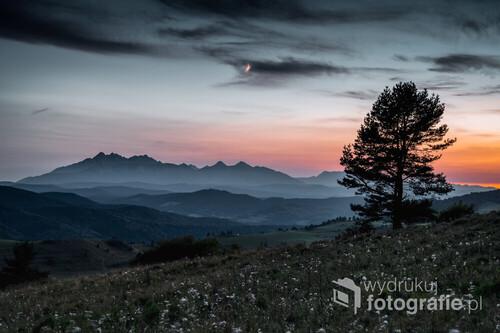 Zdjęcie zostało wykonane w Małych Pieninach w trakcie zejścia z Wysokiego Wierchu.
