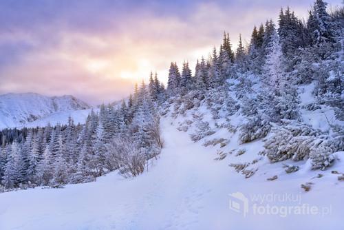 Wchód słońca w Tatrach - Droga Halę Gąsienicową