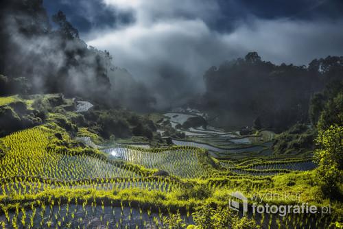 Indonezja wyspa Sulawesi dawniej Celebes  , godzinę jazdy pod górę od miejscowości Rapang jeszcze nocą ,aby zastać świt nad polami ryżowymi i aby zobaczyć magię oparów mgły nad polami .