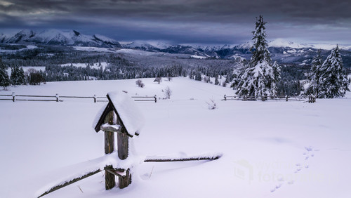 Zdjęcie zrobione z przełęczy nad Łapszanką, zimowy widok na Tatry