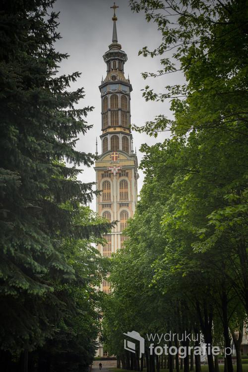Kąt widzenia obiektywu 58mm obejmującego Wieżę Bazyliki wraz z wyjątkową perspektywą. Szpaler drzew podkreśla głębię obrazu. U dołu rowerzysta kontrastujący z rozmiarem budowli.