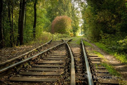 Początek jesieni. Tory kolejowe prowadzące do warszawskiej huty.