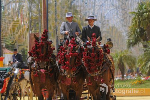 Feria del caballo, Jerez de la Frontera, Hiszpania 2015