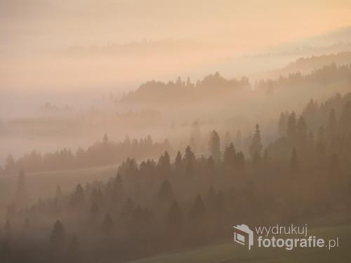Pieniński las o poranku skąpany w morzu mgieł, październik 2018.