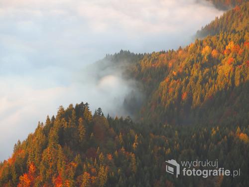 Jesienne pienińskie lasy w morzu chmur, październik 2018.