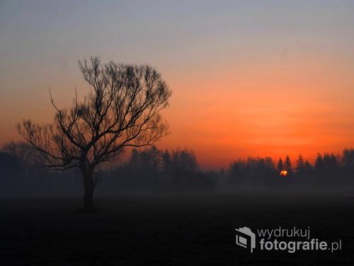 Listopadowy wschód słońca w Brzezince