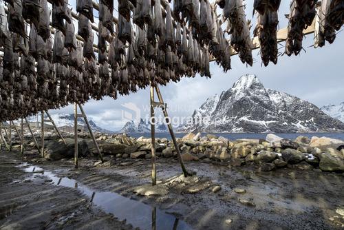 Wyspy Lofoty, Norwegia, marzec 2016