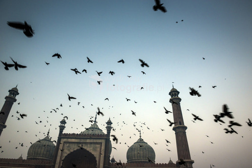 Meczet Jama Masjid, Stare Delhi, India