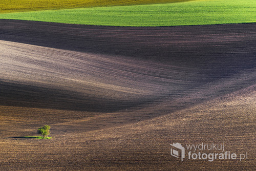 Moravian evening minimal landscape, south Moravia, Czech Republic, Europe