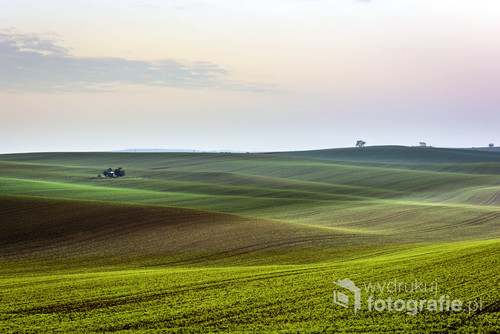 South Moravia landscape and farmland during sunset in the spring.