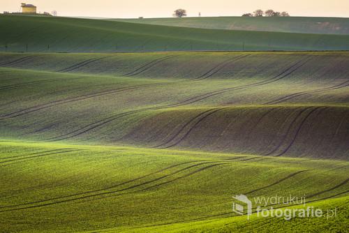 Moravian spring rolling Landscape, South Moravia, Czech Republic