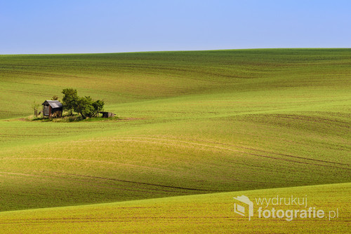 Moravian morning minimal landscape with animal feeder, South Moravia, Czech Republic, Europe