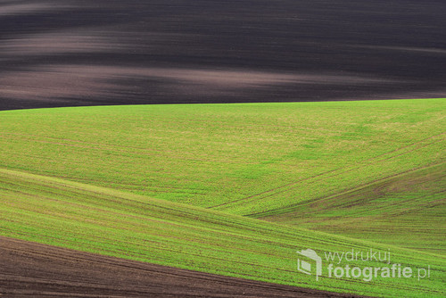 Abstract wavy fields on South Moravia, Czech republic