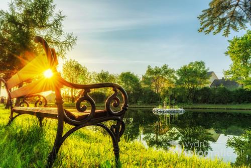 Zdjęcie przedstawia ławeczkę nad stawem we wsi Zelków. Między deskami oparcia prześwituje wstające słońce. Fotografia publikowana wielokrotnie w lokalnych gazetach