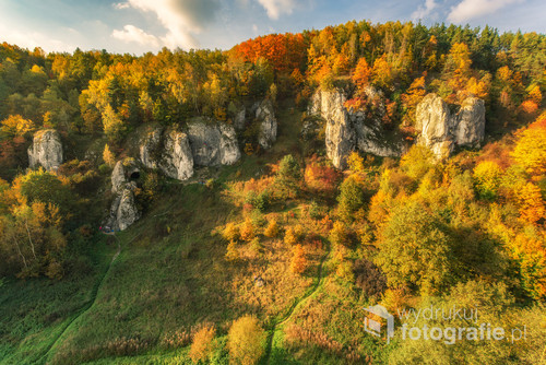 Zdjęcie przedstawia esencję dolinek podkrakowskich.  Jesień w dolinie kobylańskiej uchwycone ze szczytu skały Żabi Koń. Bardzo ryzykownego miejsca jeśli chodzi o punkt do fotografowania.