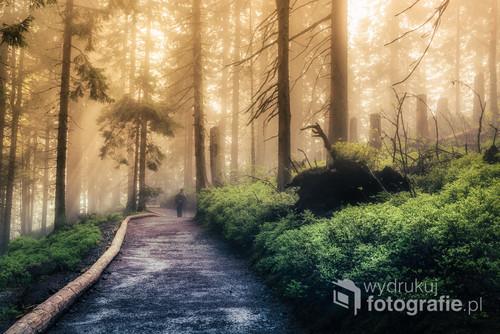 Wiosenna wyprawa na Babią Górę, zwaną też Diablakiem.  Wilgotno i mgliście, co tylko spotęgowało efekt przebijającego się słońca.  A przede mną kroczący w nieznane.