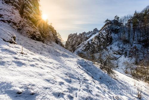 Dolina Bolechowicka zimą
