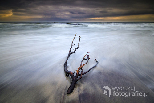 Sztormowy krajobraz na plaży Morza Bałtyckiego