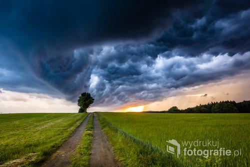 Chmura burzowa podczas zachodu słońca nad drogą i samotnie rosnącym drzewem