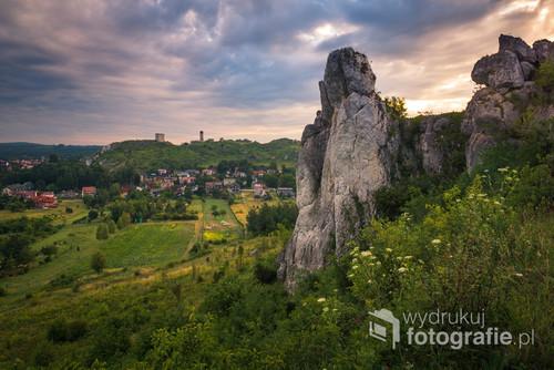 Zamek w Olsztynie