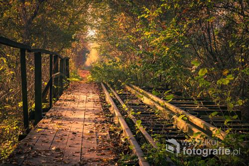 Stary kolejowy most w jesienny poranek