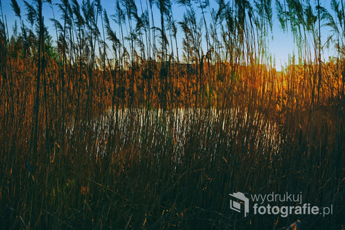 Zachód słońca nad jeziorem. Słońce chowa się między czcinami.
