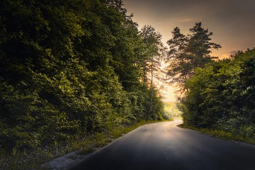 Malownicza, bardzo rzadko uczęszczana droga na lubelszczyźnie, podczas zachodzącego Słońca.