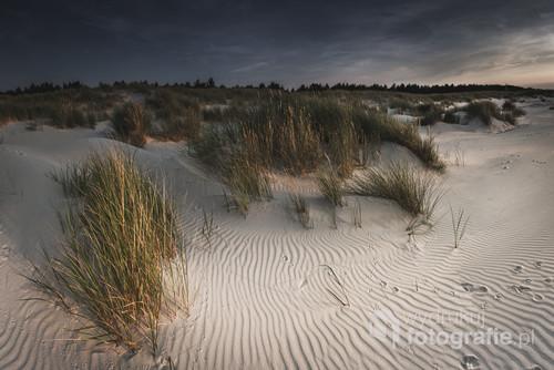 Zdjęcie powstało podczas spaceru mało uczęszczanymi zakątkami plaży w Słowińskim Parku Narodowym.