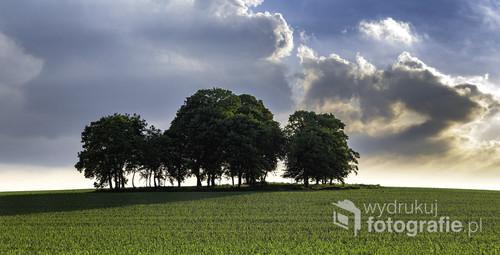 Zdjęcie wykonane w okolicach Gliwic. Tego dnia szukałem ciekawego motywu związanego z wzgórzem i drzewami. Gdy znalazłem to miejsce za moment miał być zachód słońca. Ustawiłem aparat i wykadrowałem obraz.