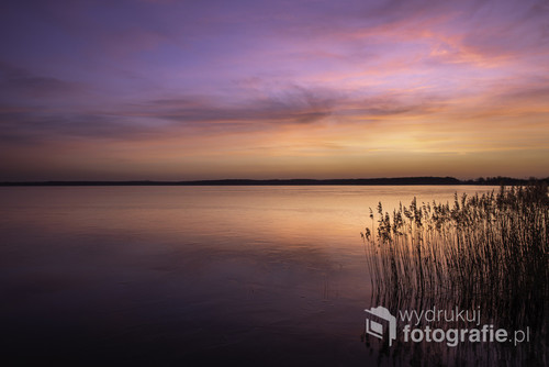 Fotografię wykonałem nad jeziorem Kozłowa Góra obok parku w Świerklańcu. Jakość światła tego dnia była idealna, delikatne chmury na niebie dodają atmosfery.